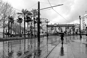 Aleja bajo la lluvia