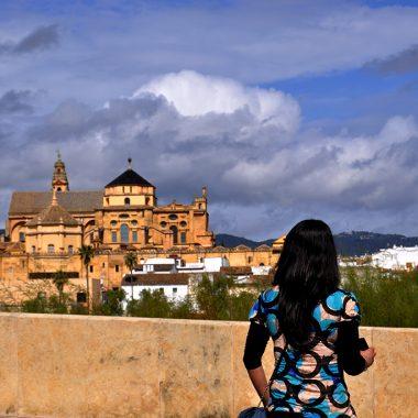 Vista de La Mezquita. Córdoba. España - Yermanasca Due