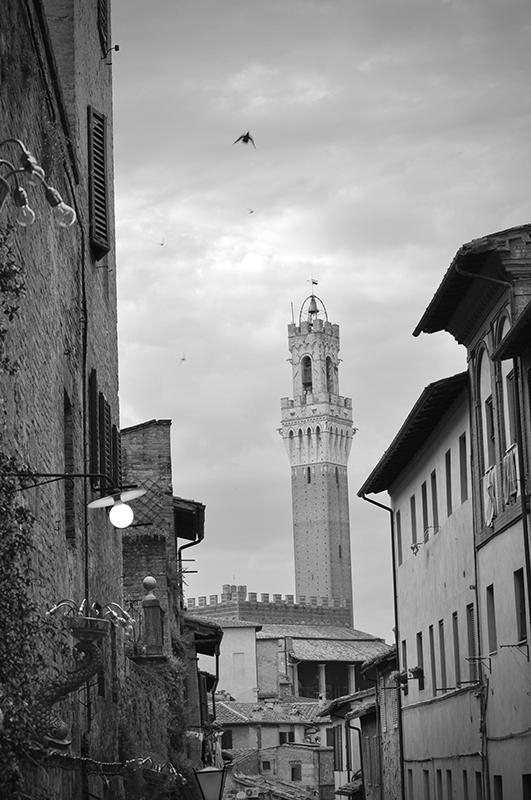 Luci di Siena. Siena. Italia. - Yermanasca Due