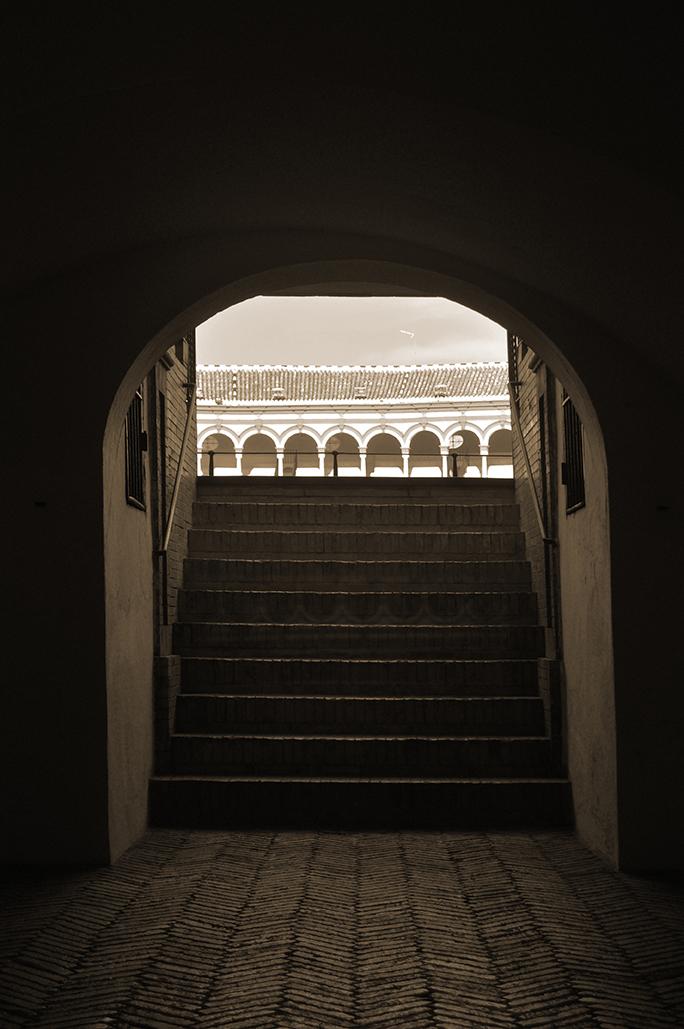 Plaza de la Maestranza de Sevilla. Sevilla. España. - Yermanasca Due